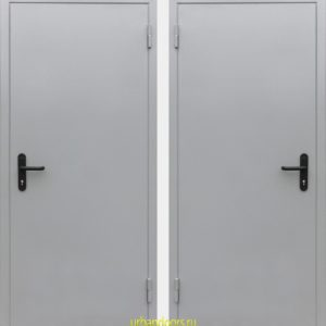 Дверь Аргус EI60