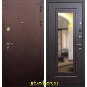 Дверь ReX 5А Зеркало Венге