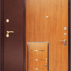 Дверь Аргус ДА-5/0 с молдингами
